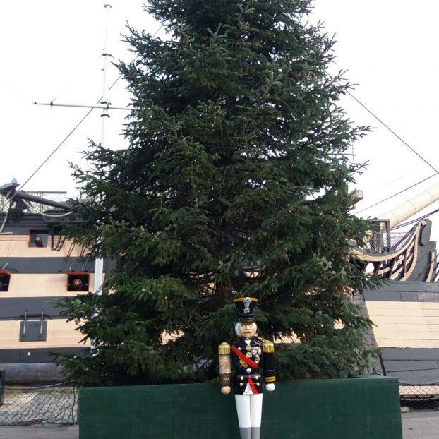 Notts fabricator supports Meghan & Harrys' Xmas Tree Supplier